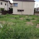 敷地の草むしりをしてきました