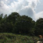 土間コンクリートのハツリ作業しました[でんホーム新モデルハウス記 12]